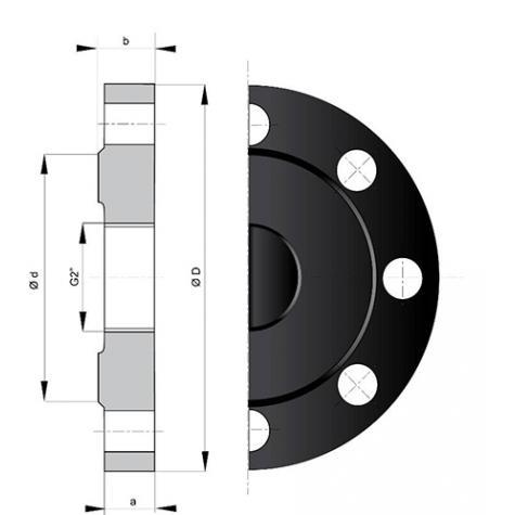 Plaque Pleine Alpinal à Orifice 2'' Gaz DN80-300